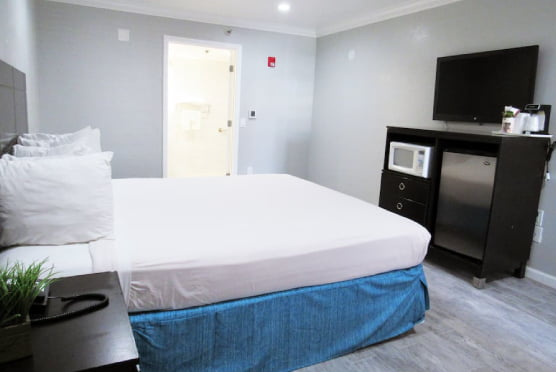 King Studio ADA Room with bed, LCD TV, and Bathroom