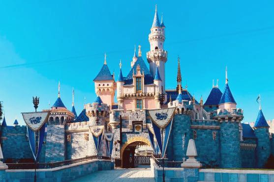 Disneyland Magic Castle - 2