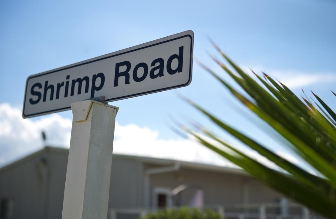 shrimp road rv park in palacios texas