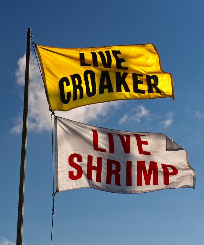 live croaker rv park in palacios texas