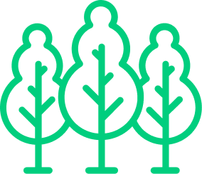 Image d'arbres