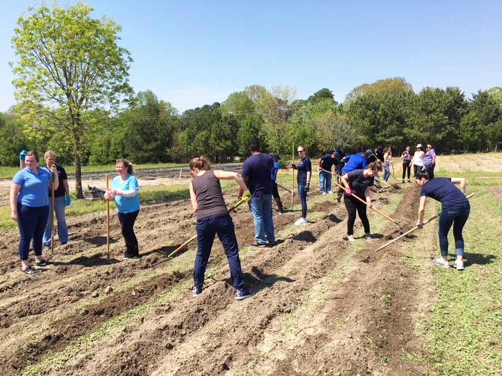 HHHunt Employee Ambassadors Volunteer to Help Others
