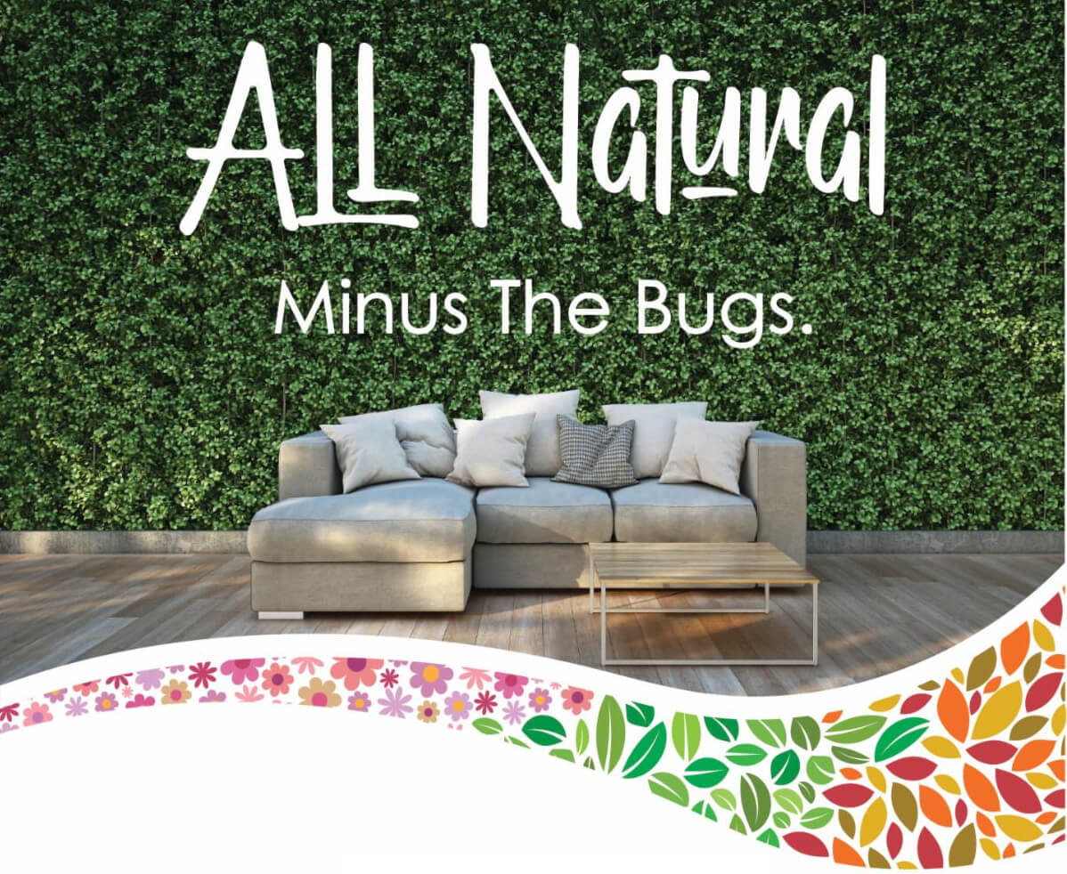 """picture of couch outside with the words """"all natural minus the bugs"""" written above couch"""