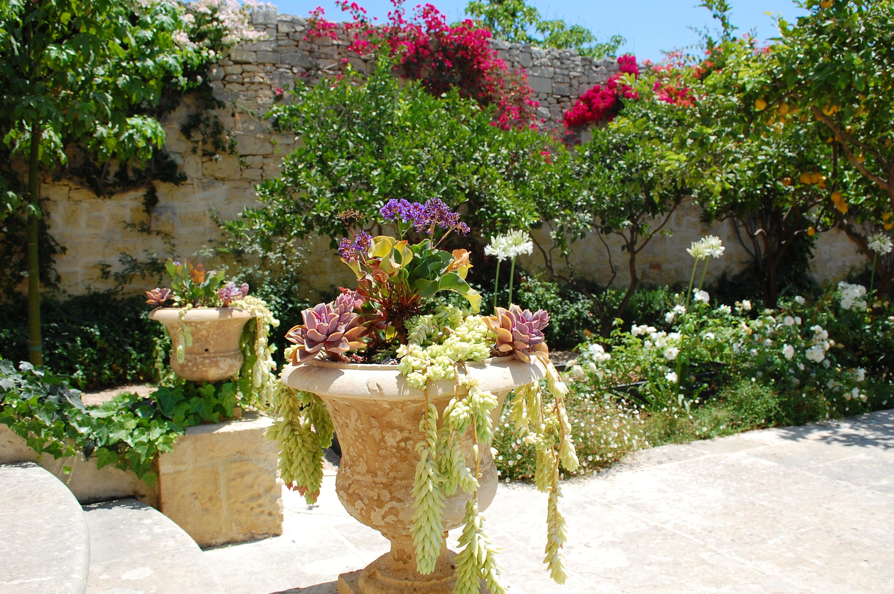 In Mediterranean Bliss