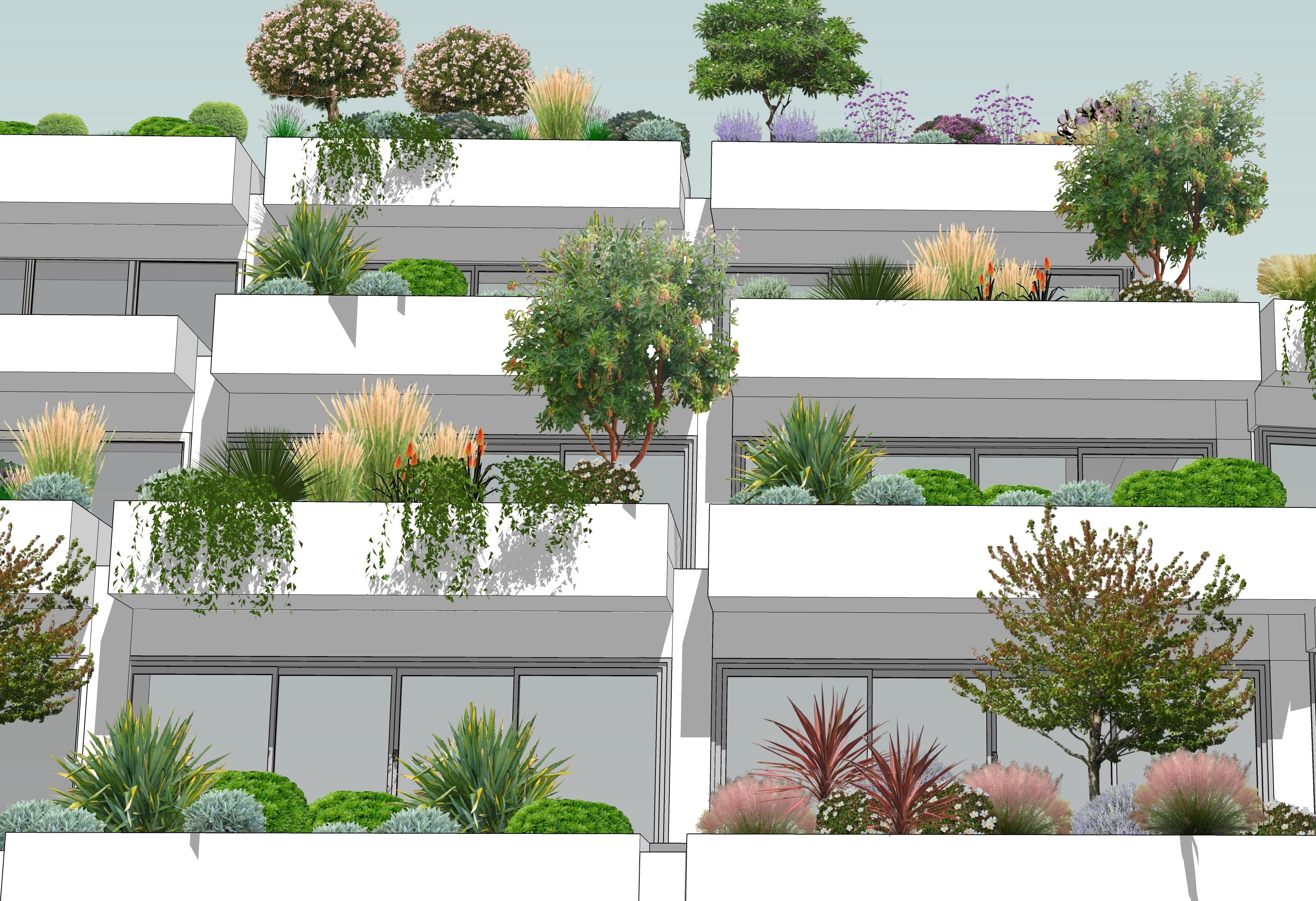 Spinola Park Planting