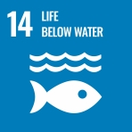 UN SDG 14 aims to protect aquatic environments