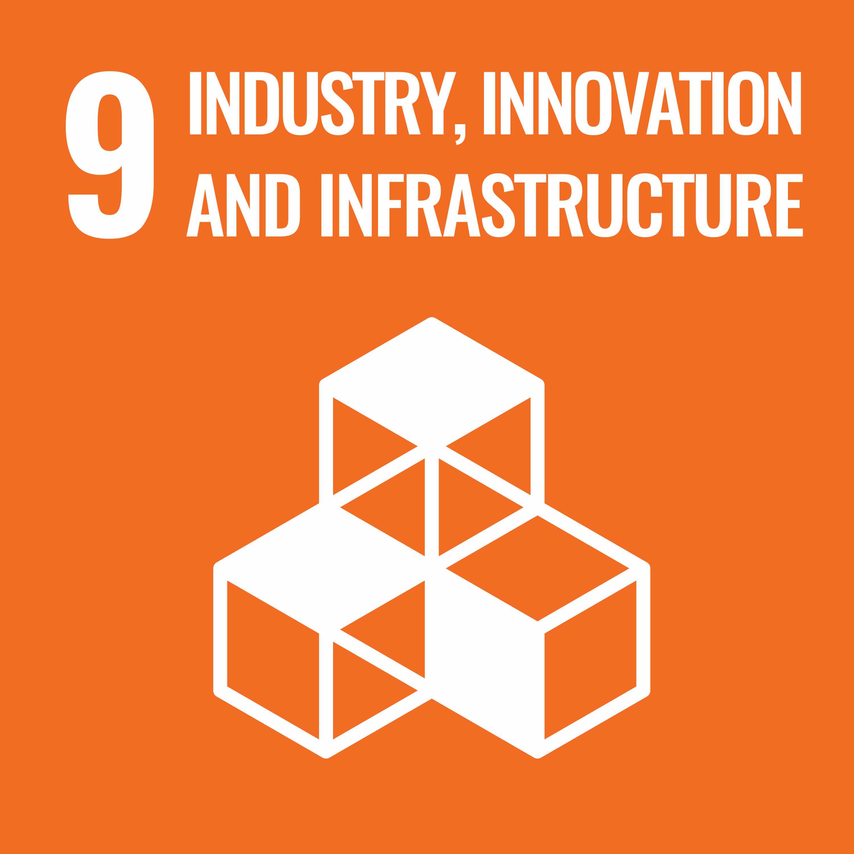 UN sustainable development goal 9