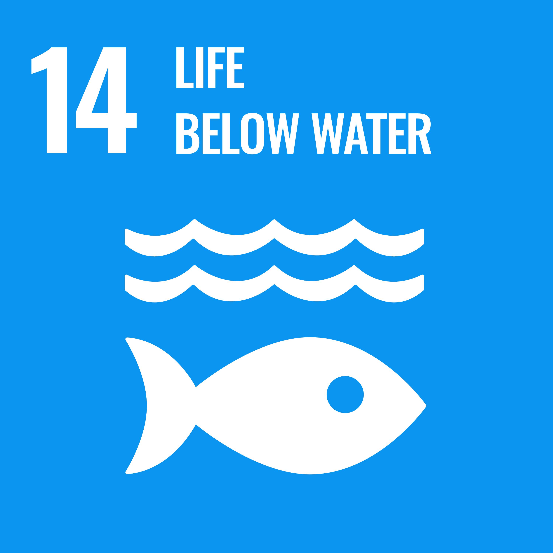 UN sustainable development goal 14