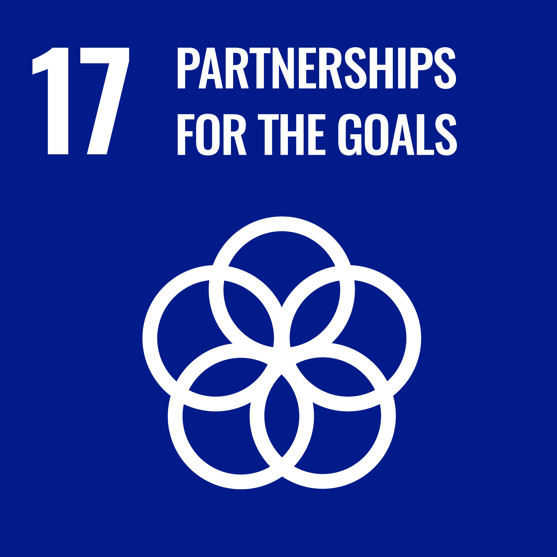UN sustainable development goal 17