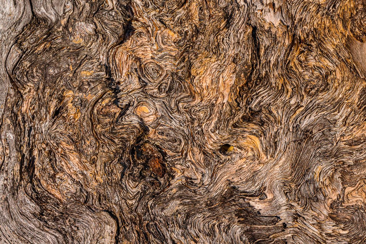 Bois, écorces, roches, sable, neige, eau…Elles sont « touchées » et travaillées par le vent, la pluie, le gel et le temps, parfois court, parfois pas ; les contrastes entre ombres et lumières à leurs surfaces créent de nombreux motifs graphiquement abstraits aux formes très diverses.