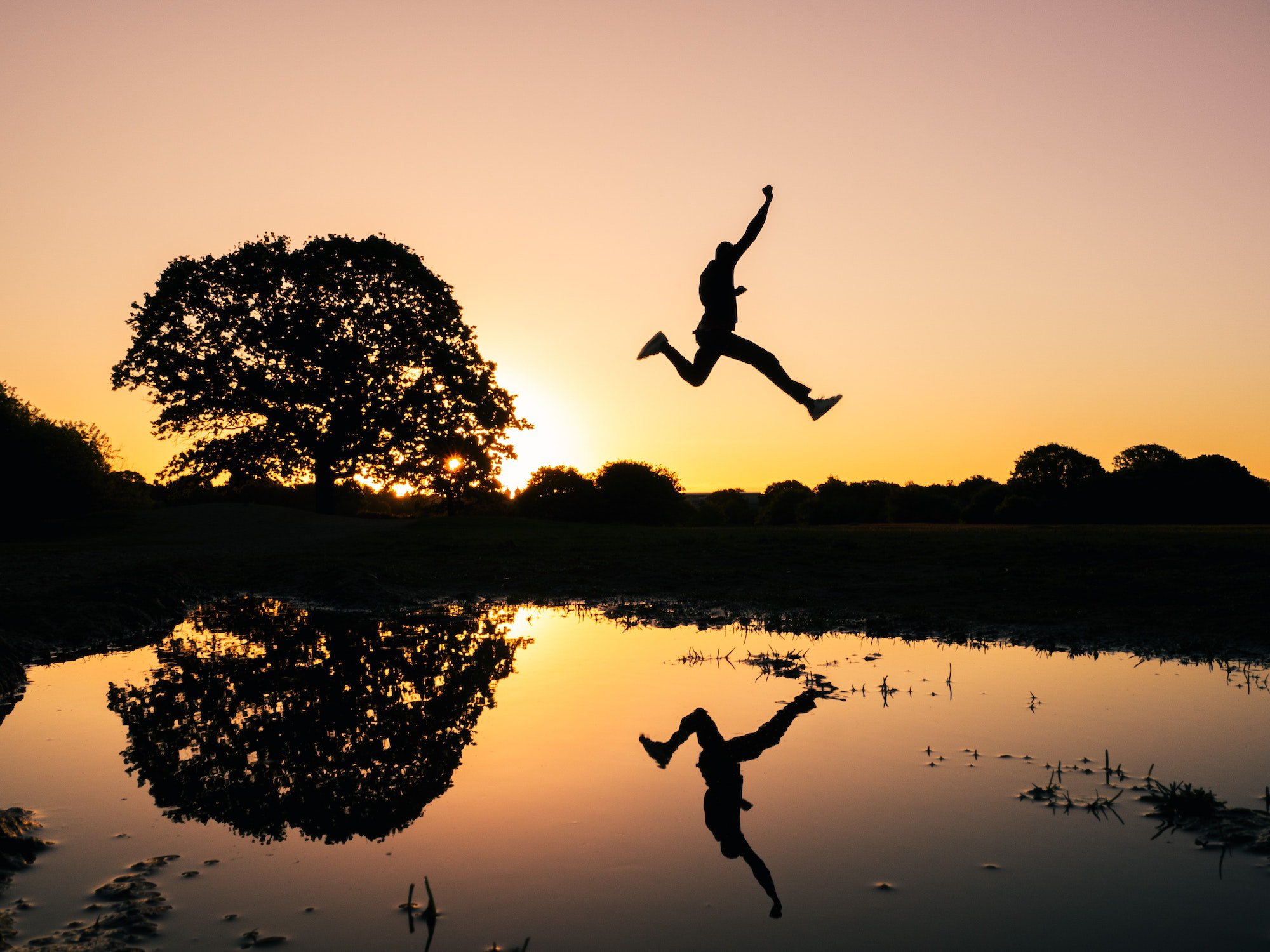 Person leaping during dawn over a lake by a tree consultant management platform