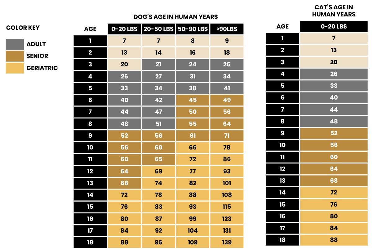 Dog & Cat Age Graph