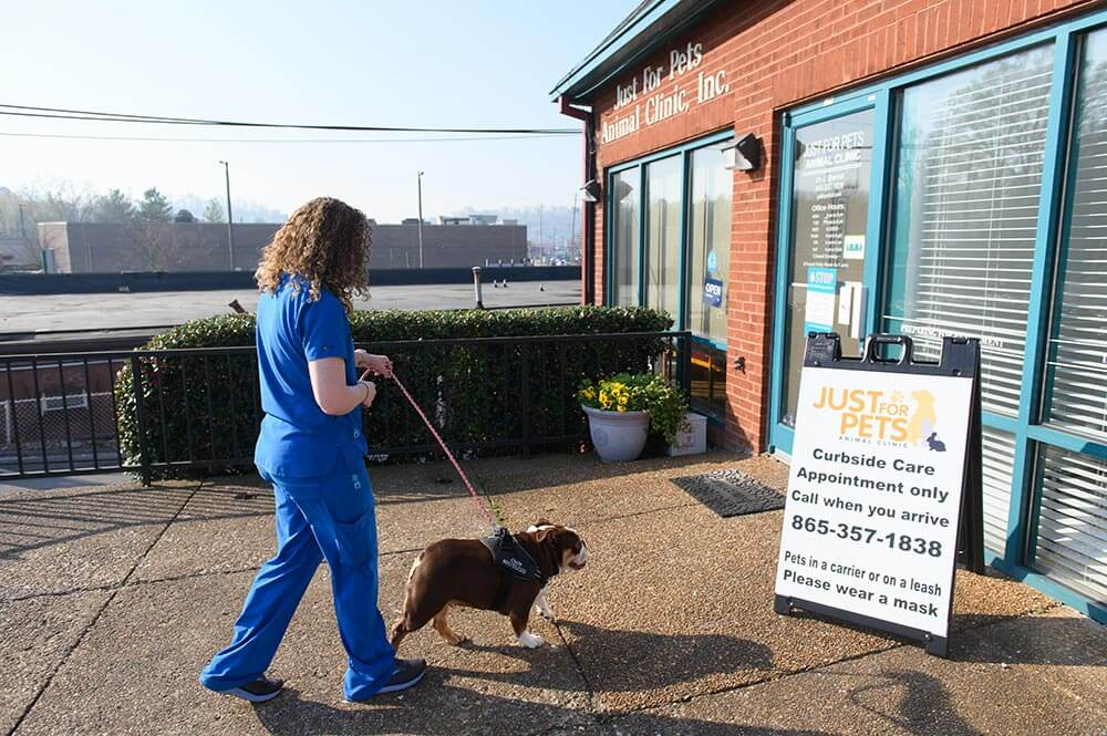 Staff member with Patient entering facilities