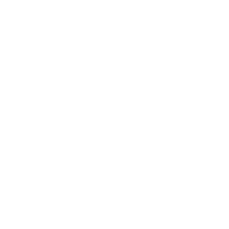 CSS Design Icon