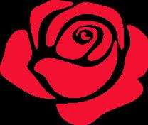 Miss Scarlett Rose