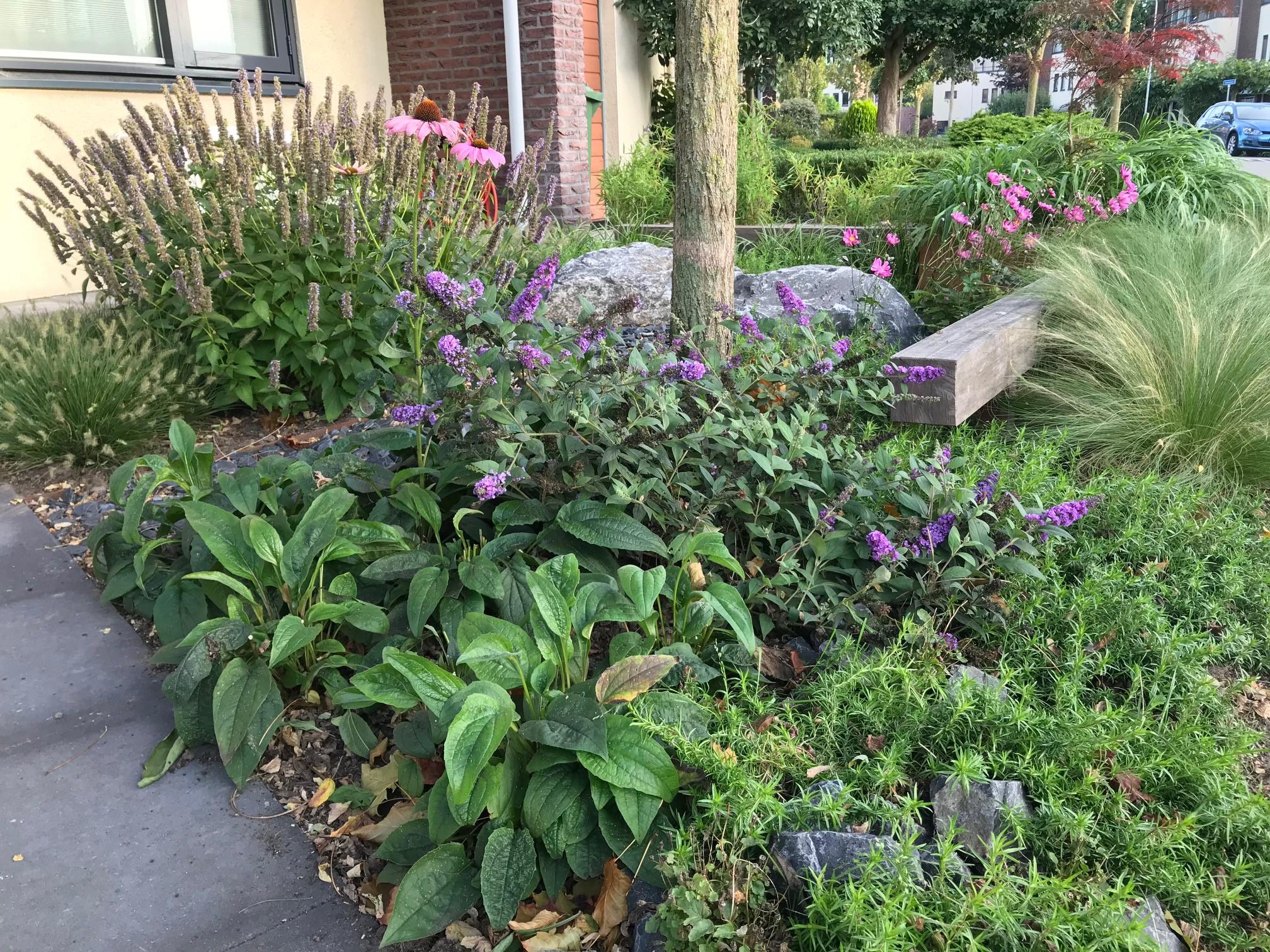 levende tuin satter