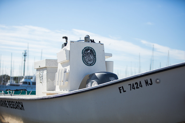 Boat for Florida Fish and Wildlife Conservation Commission