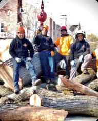 Crew Aerial Tree Service Glencoe