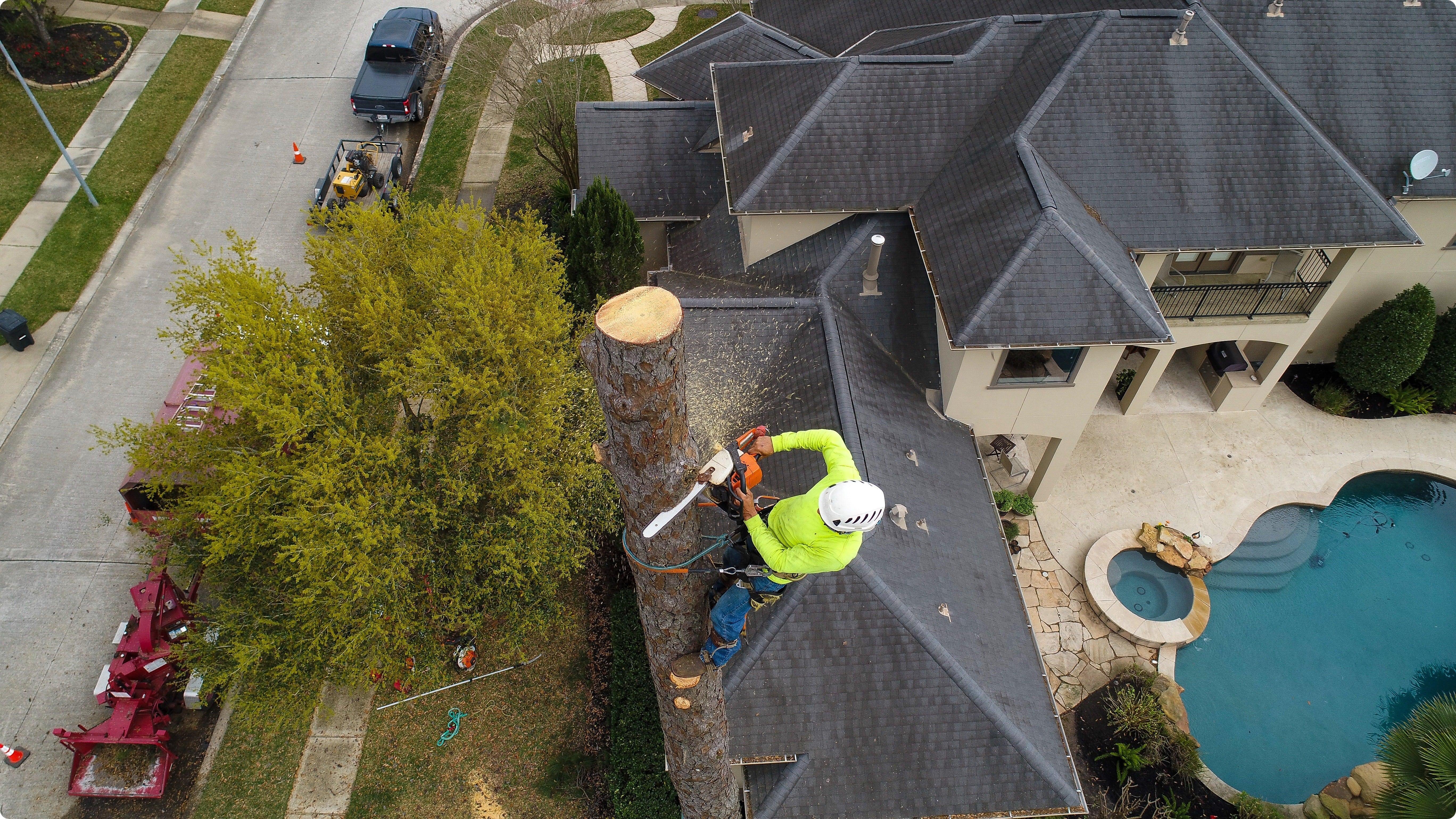 Tree Removal Kildeer