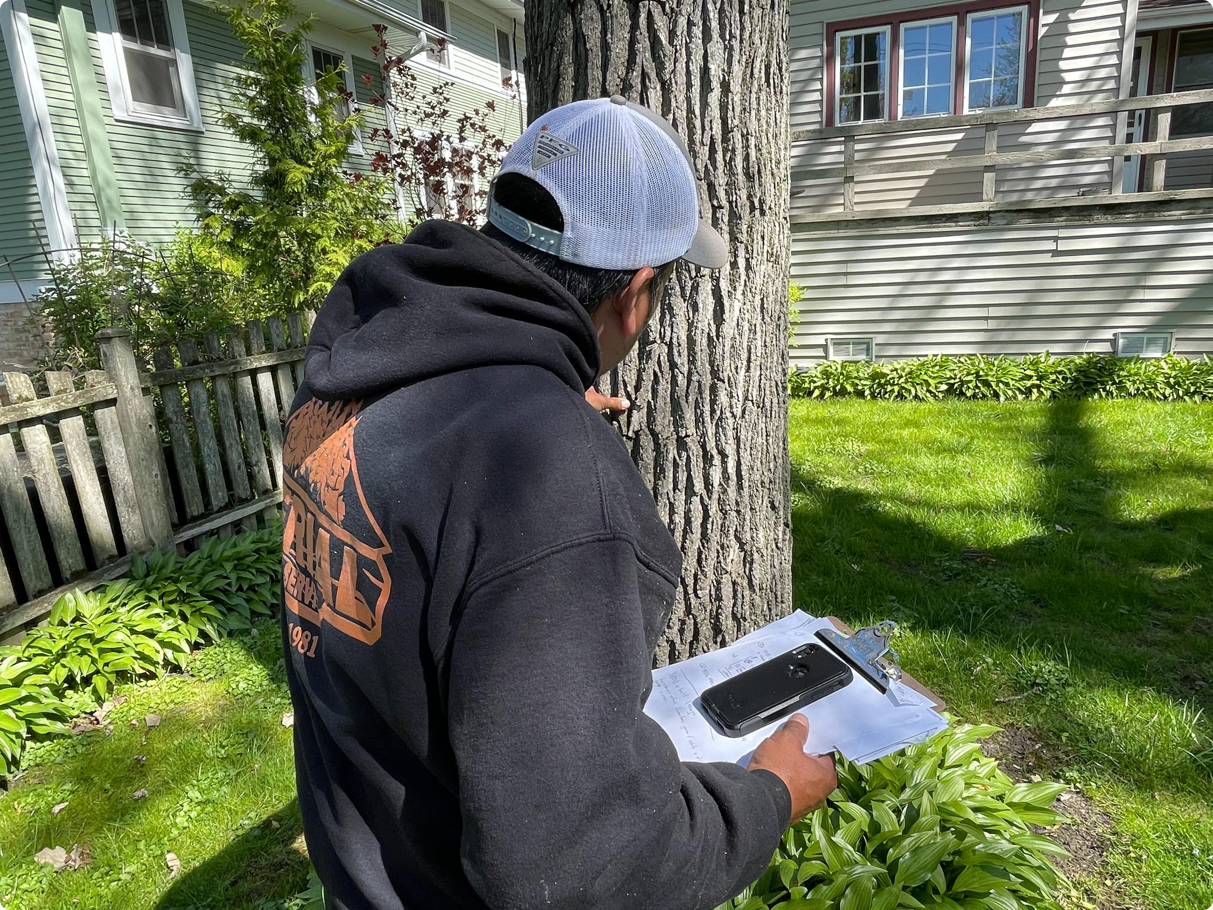 Tree Cutting Inspection