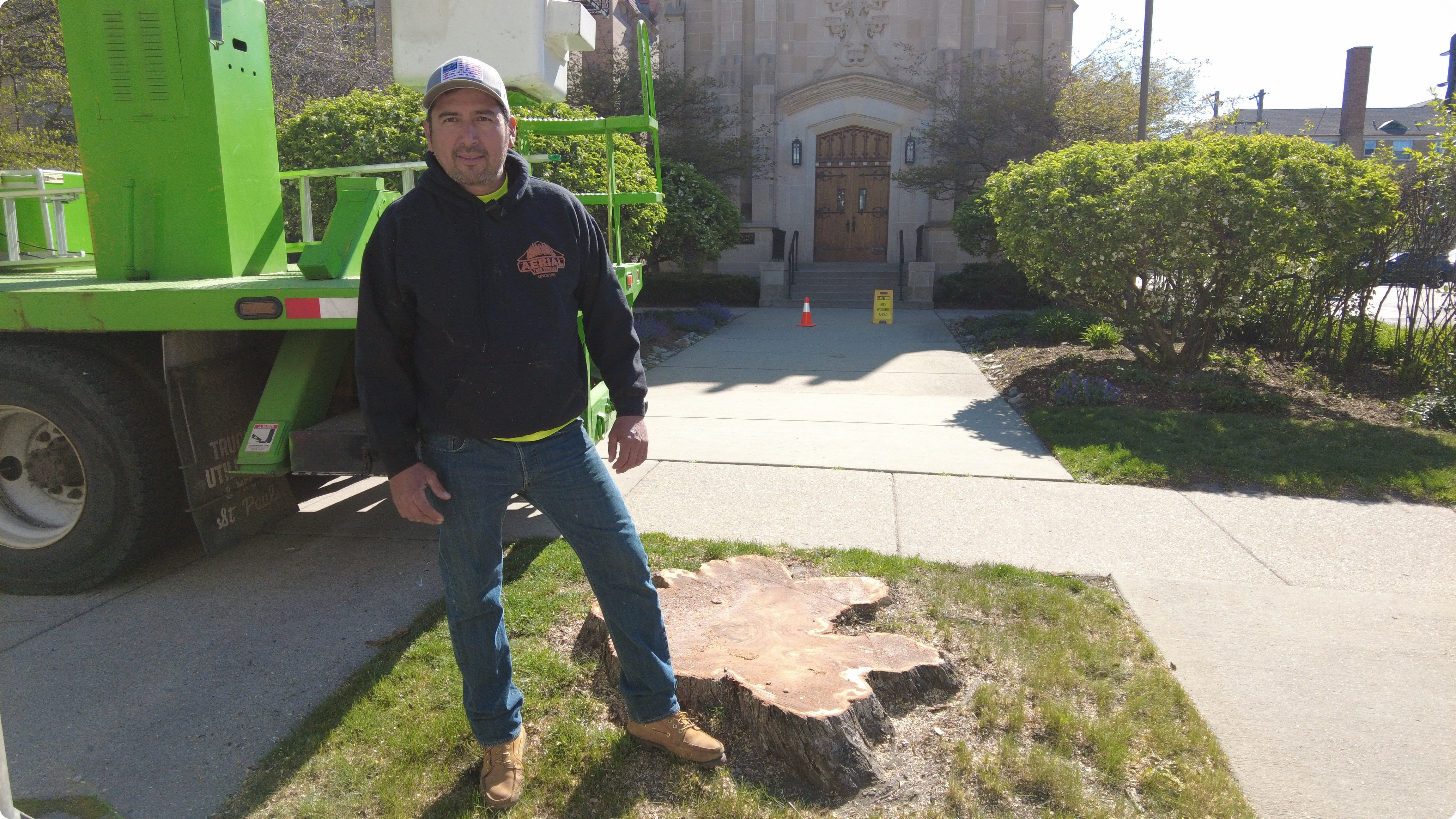 Tree Removal Costs Near Me