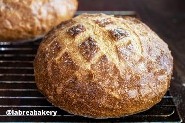 Sourdough from La Brea Bakery Cafe