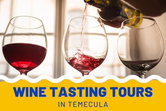 Wine Tasting Tours in Temecula - Wine being poured in a glass
