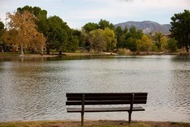 Yorba Regional Park View