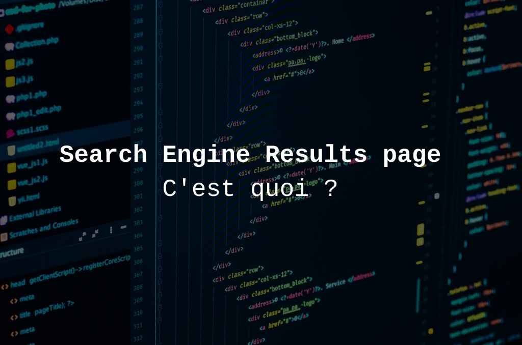 SERP ou Search Engine Results Page