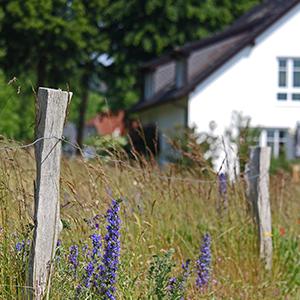 Haus verkaufen - alles zu den Gründen und zum Ablauf