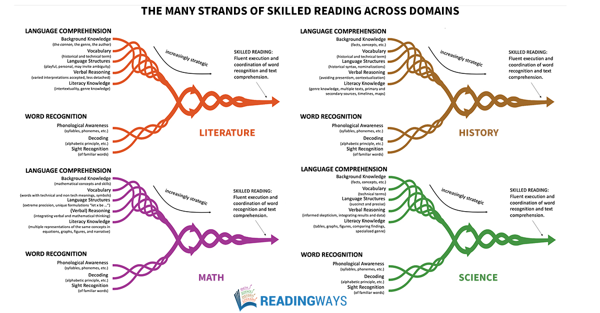 The Many Strands of Skilled Reading across Domains