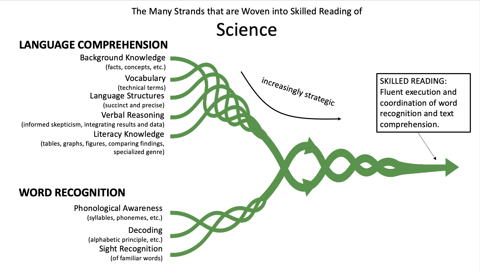 The Many Strands of Skilled Reading in Science