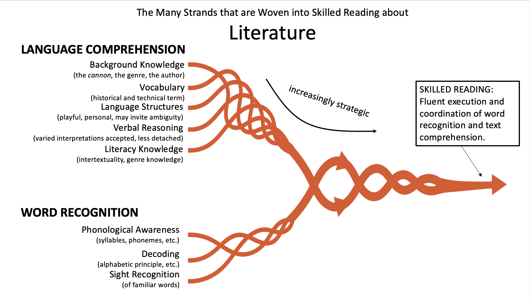The Many Strands of Skilled Reading in Literature