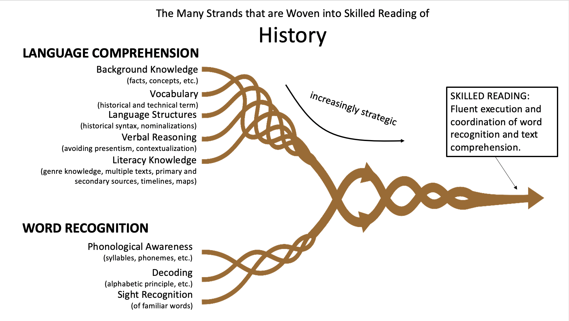 The Many Strands of Skilled Reading in History