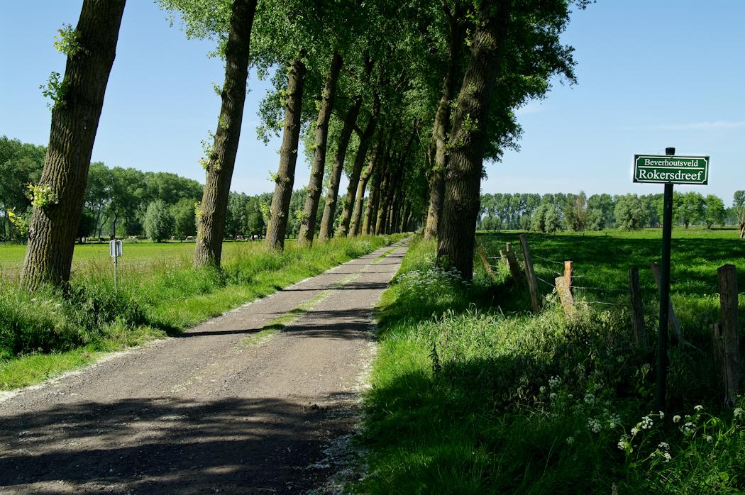 Beverhoutsveld