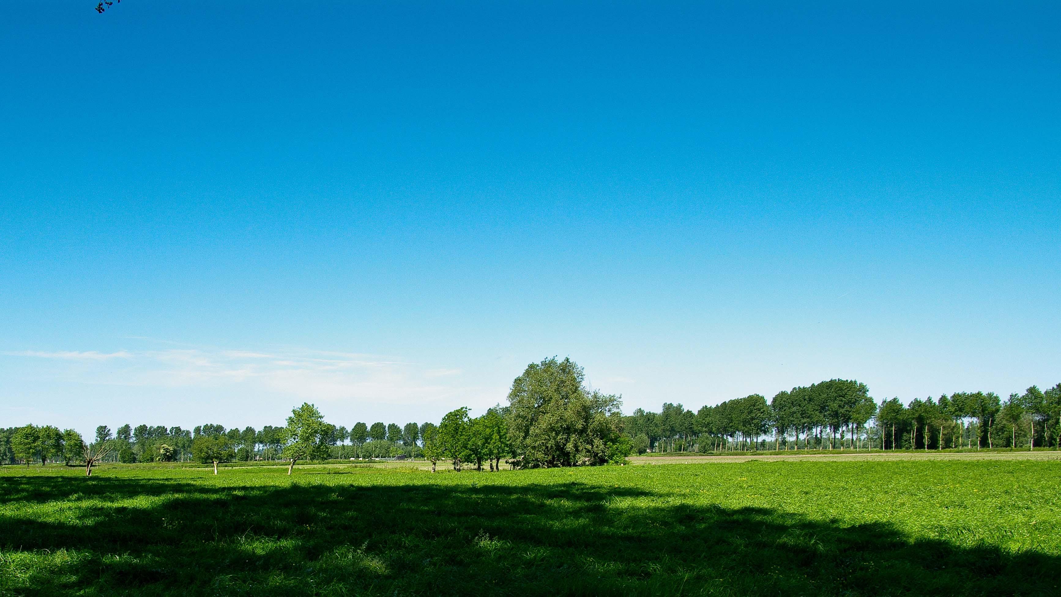 Beverhoutsveld wandelroute