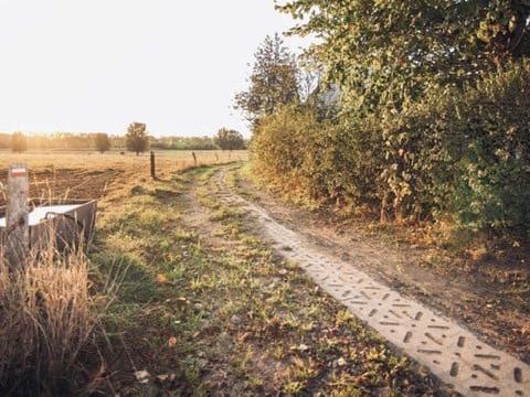 De trage weg in Oostveld