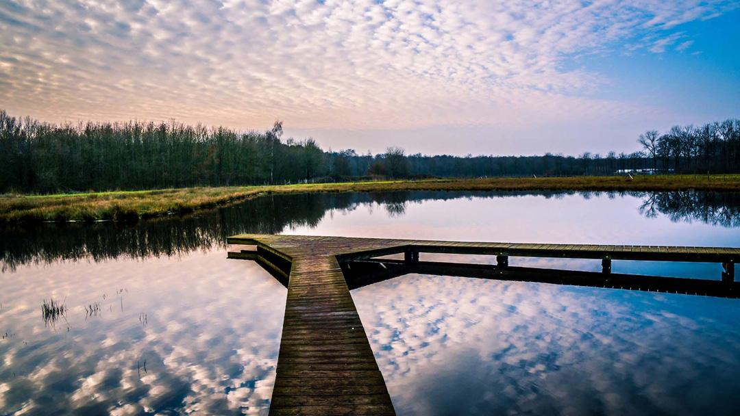Landschapspark Bulskampveld