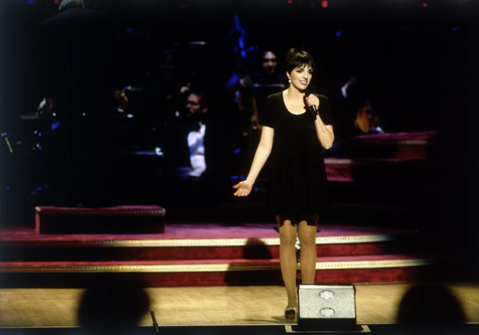 Liza Minnelli stands and sings. She is wearing a little black dress.
