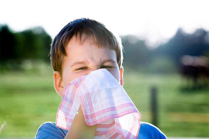 Hay fever season is upon us. Pollen causes hay fever, and allergic reactions can affect your throat, eyes, nose, and mouth. There is no cure for hay fever; however, we have some tips to ease your symptoms.