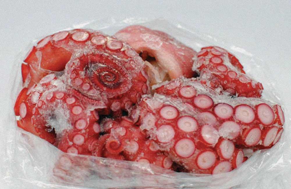 Nautical Blu Wild Caught Octopus