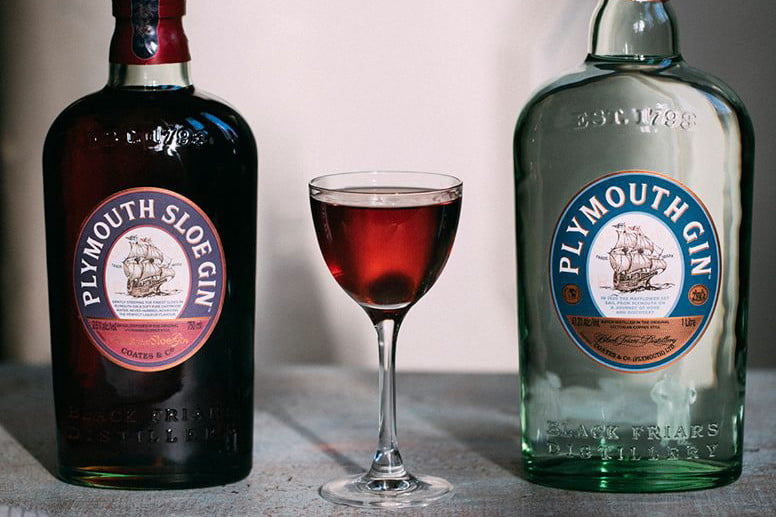 what is sloe gin plymouth gins