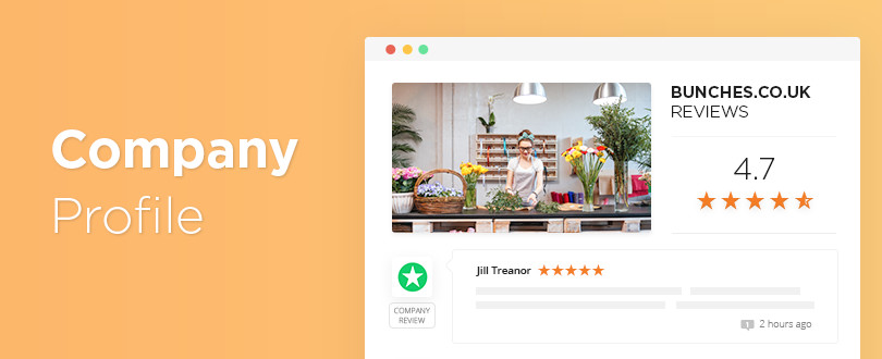 Feature - Company Profile Page on Reviews.io