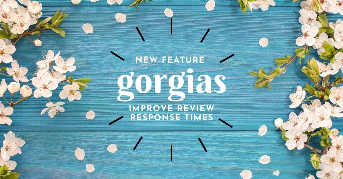Improve Response Times for Shopper Using Gorgias Review Integration