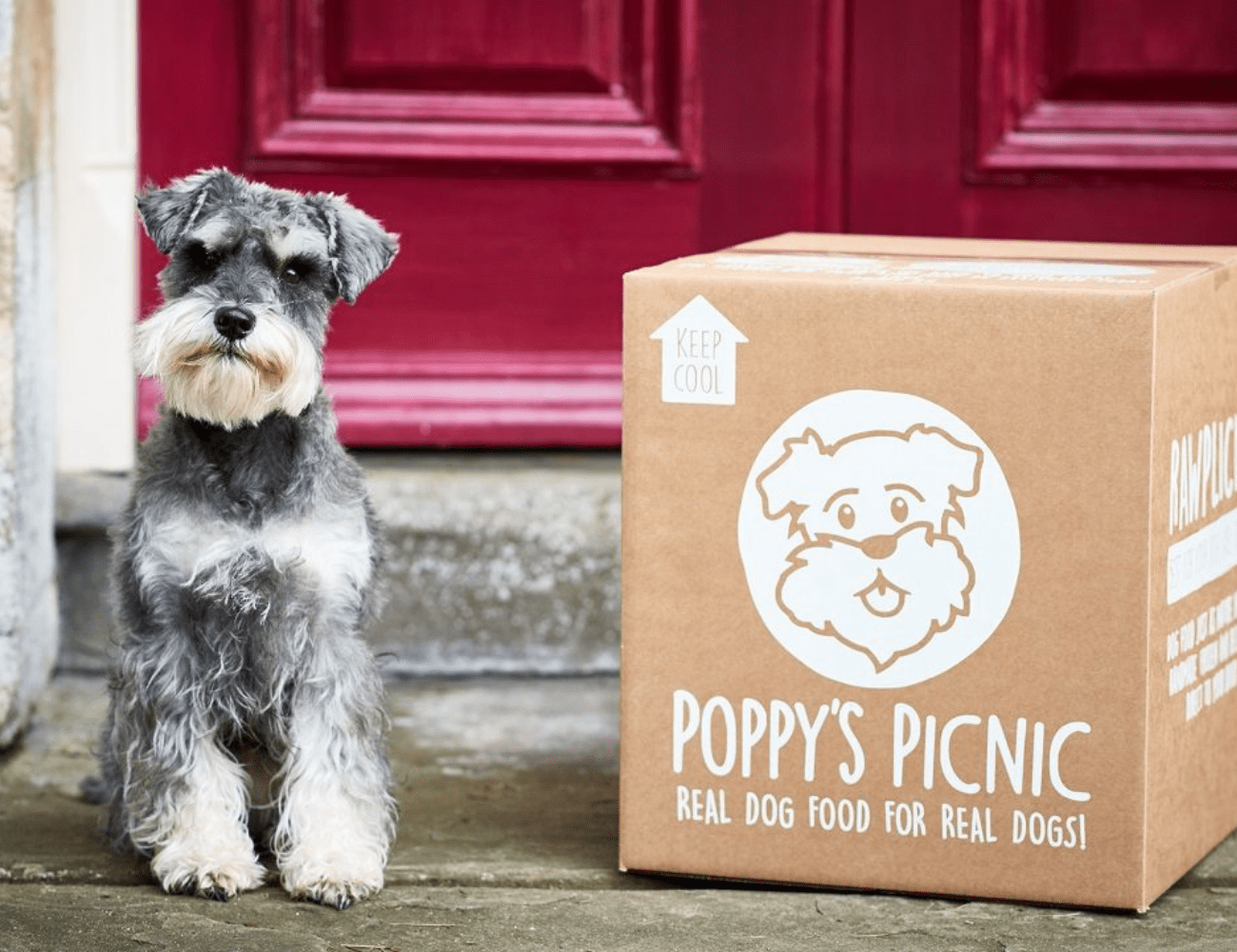 How Startup, Poppy's Picnic, Use Reviews To Supercharge Their Growth