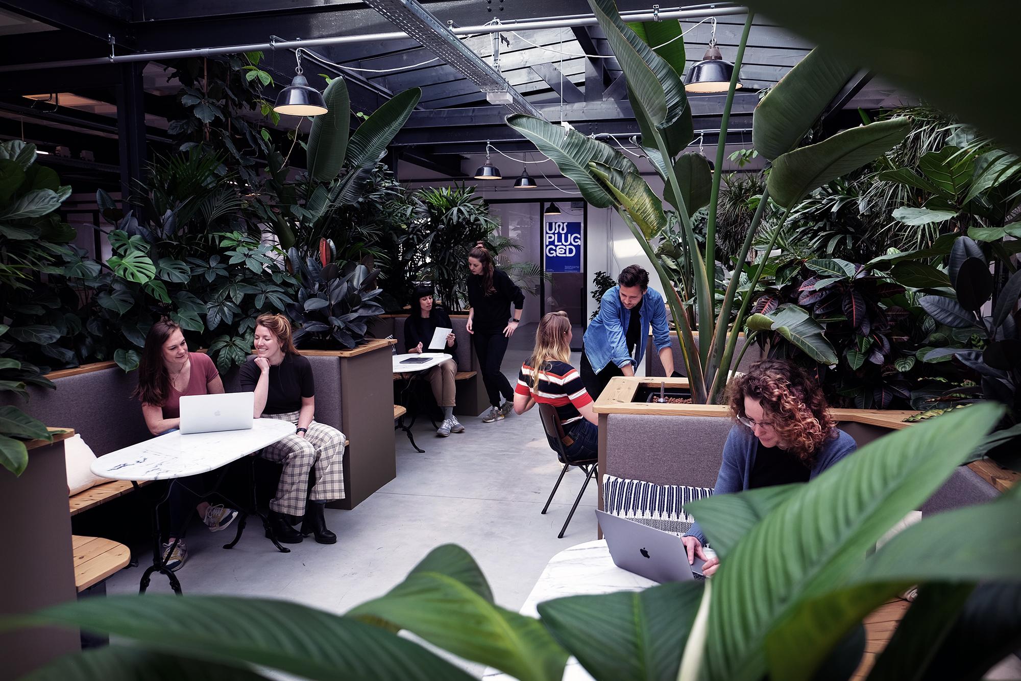Unplugged - Kantoor met zitjes en planten