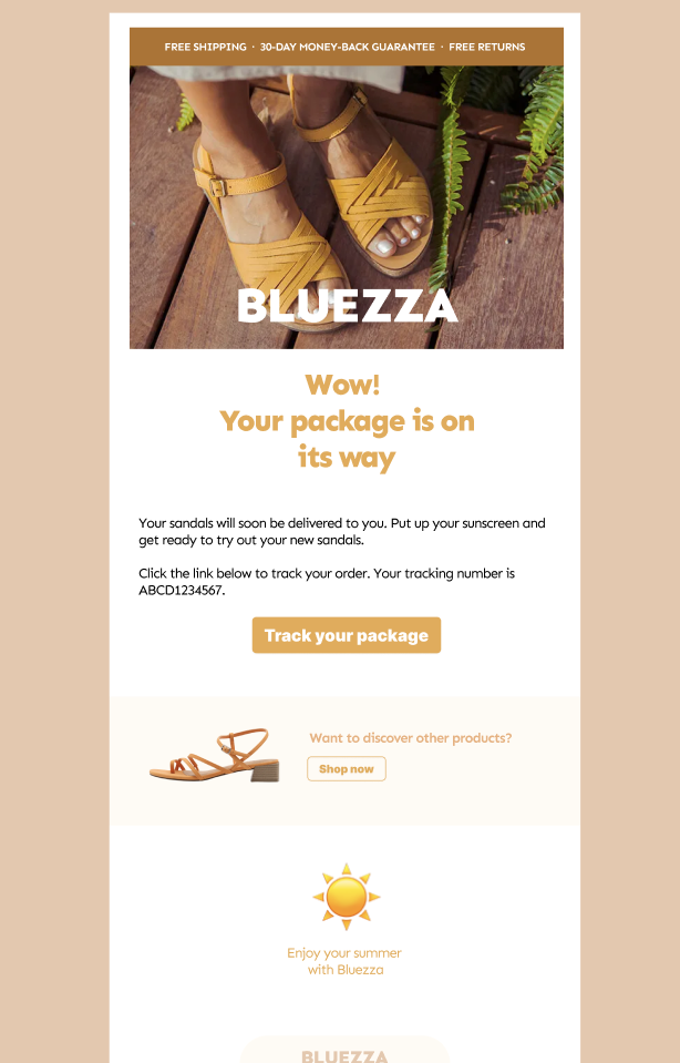 Image of Bigblue branded post-purchase emails