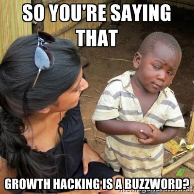 """Résultat de recherche d'images pour """"growth hacking memes"""""""