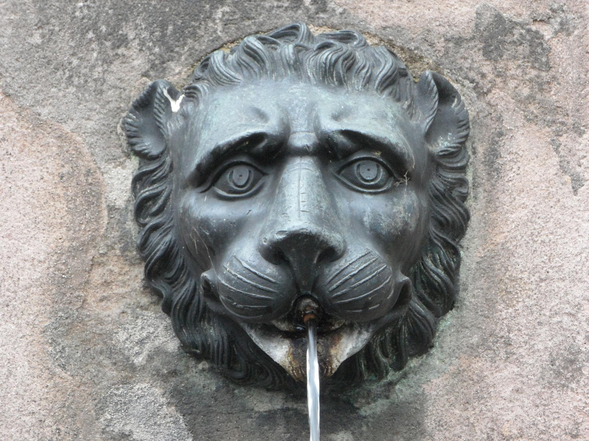 Lion Gargoyle Water Spout