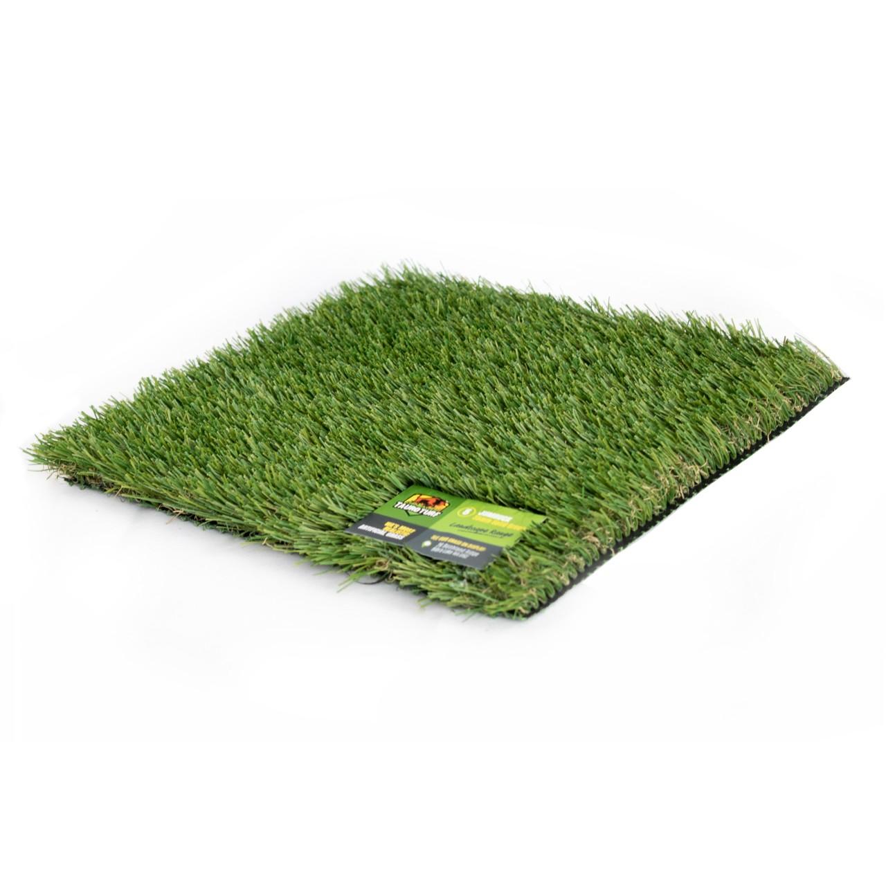 Jumbuck grass image